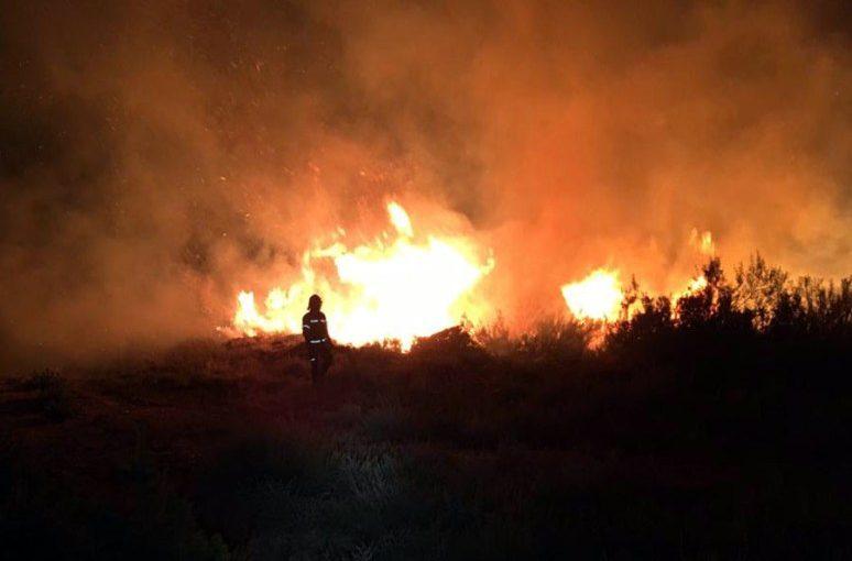 Importante incendio en un campo