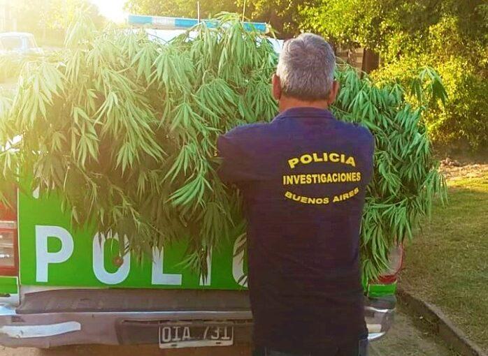 Secuestro de herramientas y marihuana
